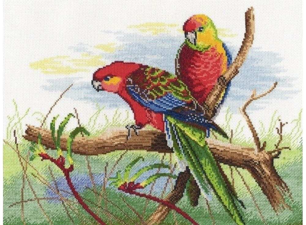 Купить Вышивка крестом, Набор для вышивания «Попугаи», Овен, 30x22 см, 509