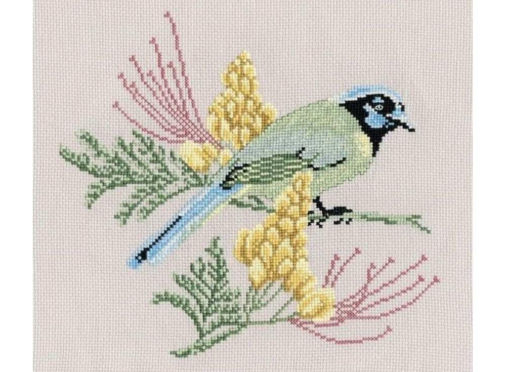 Купить Вышивка крестом, Набор для вышивания «Желтопузик», Овен, 24x22 см, 553