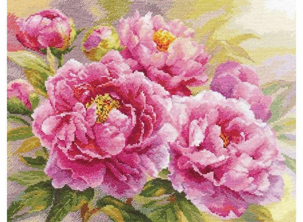 Купить Вышивка крестом, Набор для вышивания «Пионы», Алиса, 40x30 см, 2-35