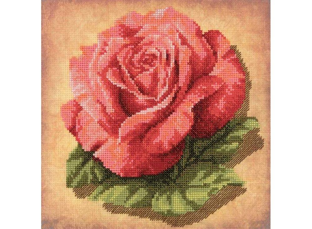 Купить Вышивка крестом, Набор для вышивания «Роза», Риолис (Сотвори Сама), 20x20 см, 0070 РТ