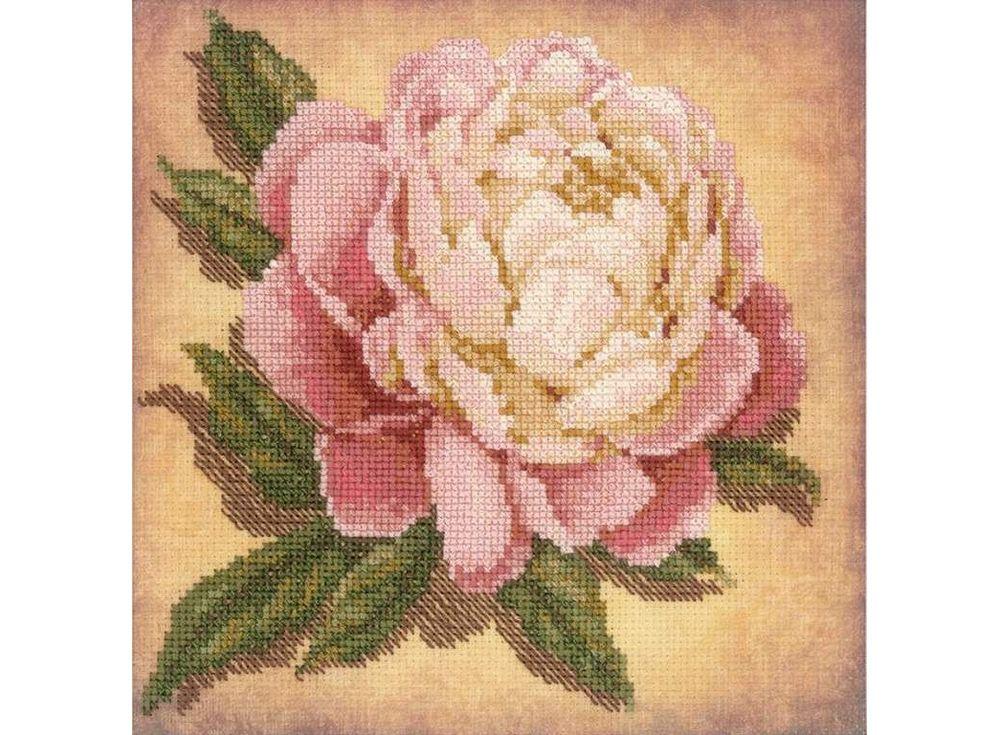 Купить Вышивка крестом, Набор для вышивания «Пион», Риолис (Сотвори Сама), 20x20 см, 0071 РТ