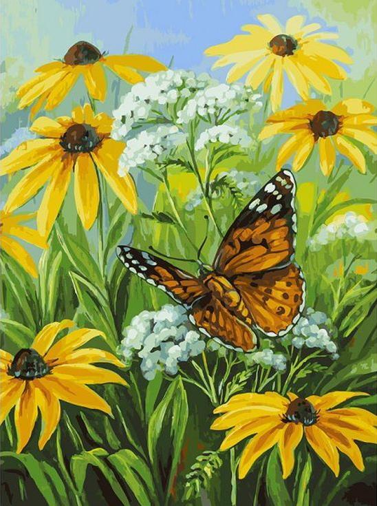 Купить Картина по номерам «Цветочная поляна», Белоснежка, 153-AS