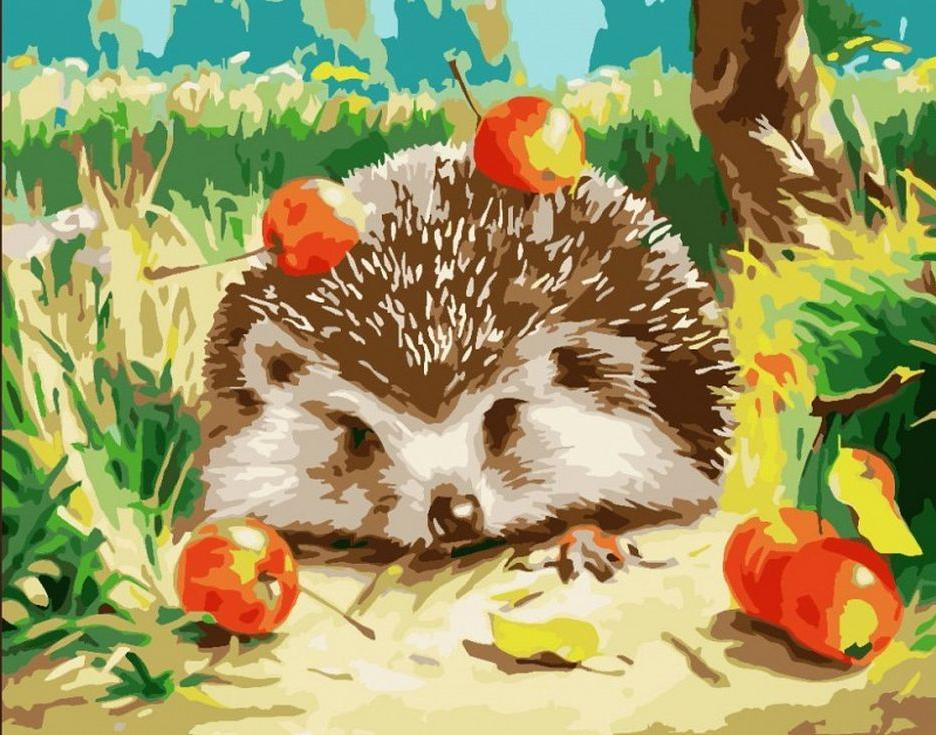 Купить Картина по номерам «Ёжик с райками», Paintboy (Premium), GX6215