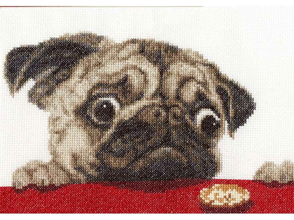 Купить Вышивка крестом, Набор для вышивания «Мопсик», Золотое Руно, 17x24, 2 см, НЛ-038