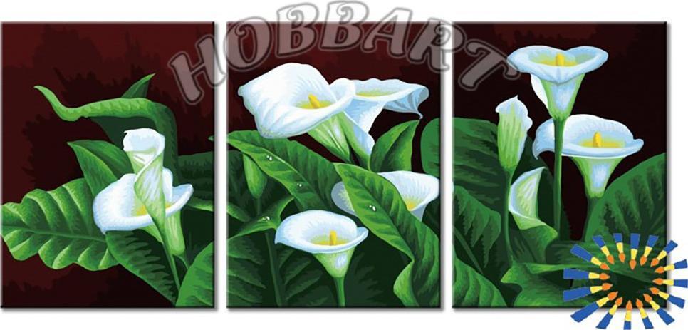 Купить Картина по номерам «Каллы», Hobbart, Россия, 3 шт. 30x40 см, DZ34090002-Lite