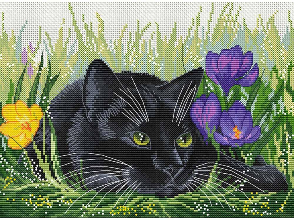Купить Вышивка крестом, Набор для вышивания «Кот и крокусы», Белоснежка, Россия, 20x27, 5 см, 183-14