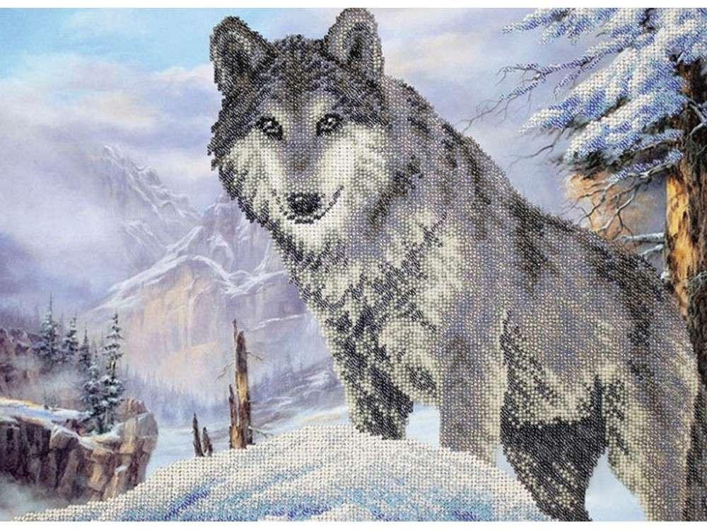 Купить Вышивка бисером, Набор вышивки бисером «Волк», Паутинка, 38x28 см, Б-1472