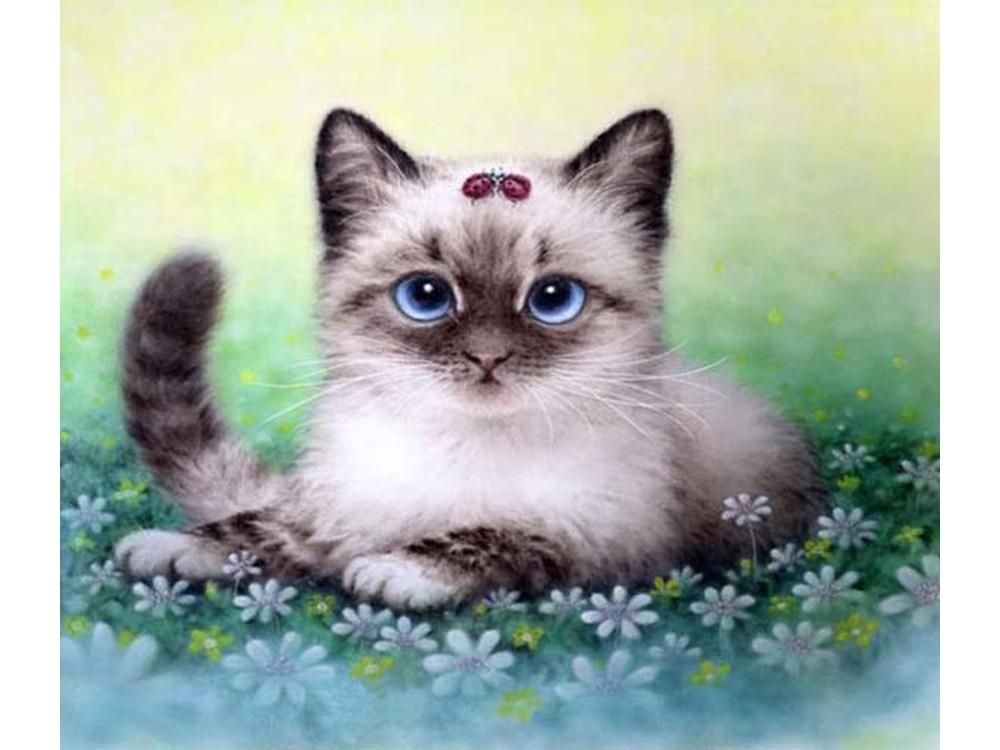 Подписать, картинки красивые с котятами кошками нарисованные