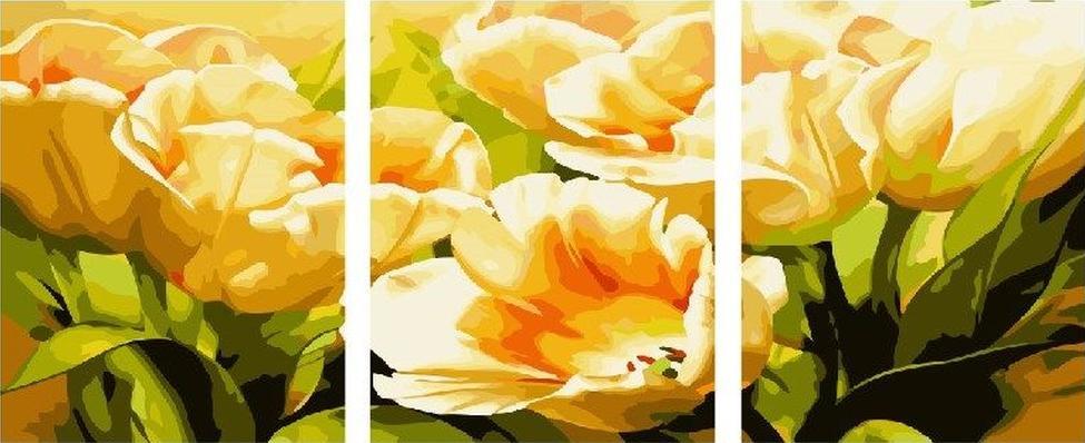 Купить Картина по номерам «Тюльпаны», Paintboy (Premium), 3 шт. 40x50 см, P054