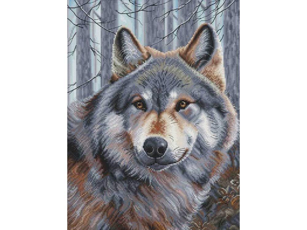 Купить Вышивка крестом, Набор для вышивания «Волк», Белоснежка, 27x36, 5 см, 200-14