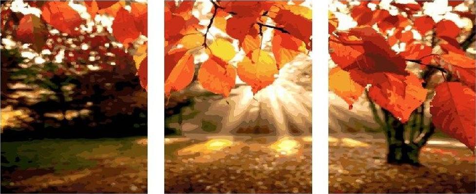Купить Картина по номерам «Октябрь», Paintboy (Premium), Китай, 3 шт. 40x50 см, PX5149