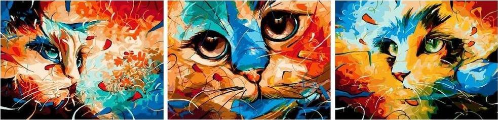 Купить Картина по номерам «Разноцветные коты», Paintboy (Premium), 3 шт. 50x50 см, PX5193