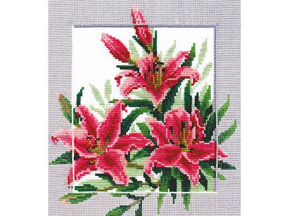 Купить Вышивка крестом, Набор для вышивания «Символы. Нежность», Сделай своими руками, 20x23 см, С-06