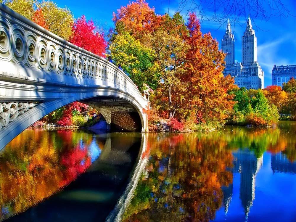 Купить Алмазная вышивка «Нью-Йорк. Центральный парк», Алмазное Хобби, Россия, 50x80 см, Ah0208