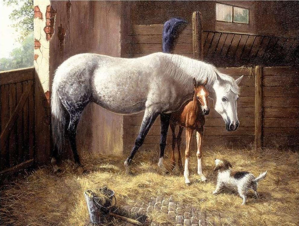 Купить Картина по номерам «Новые друзья», Royal&Langnickel, PAL 24