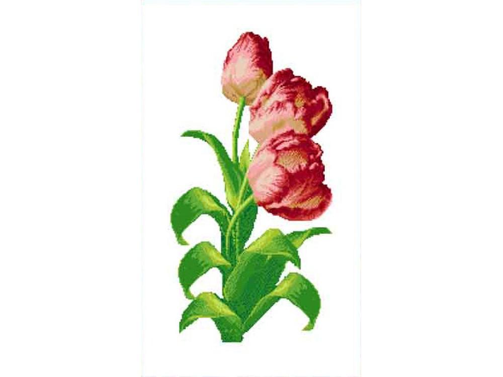 Купить Вышивка крестом, Набор для вышивания «Тюльпаны», Каролинка, 33x53 см, КТКН 130