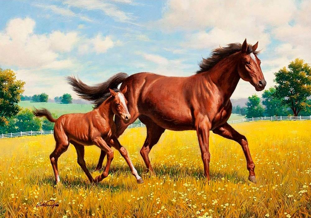 Купить Алмазная вышивка «Лошадь с жеребенком», Алмазное Хобби, Россия, 40x60 см, Ah07181