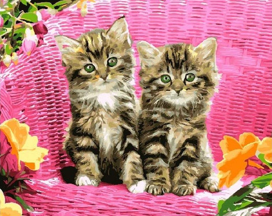 Купить Картина по номерам «Котята в корзине», Paintboy (Premium), Китай, GX26530