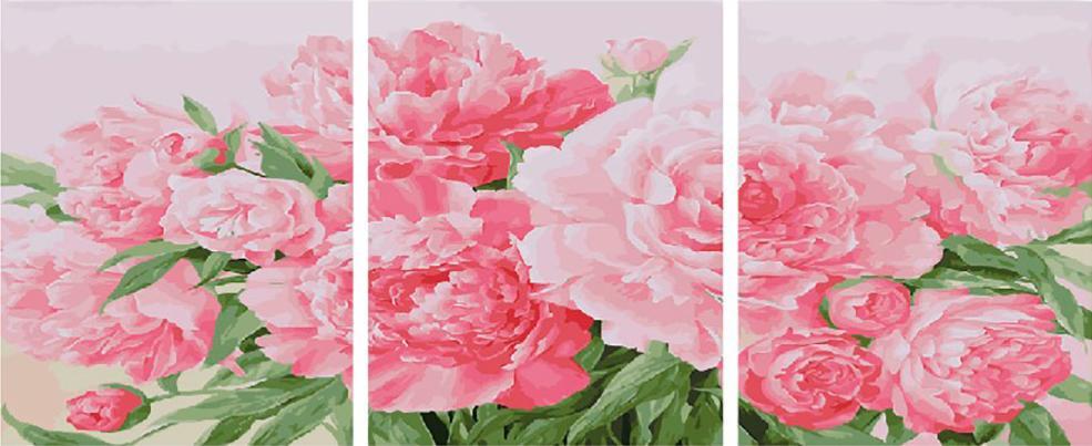 Купить Картина по номерам «Розовые пионы», Paintboy (Premium), Китай, 3 шт. 40x50 см, PX5231