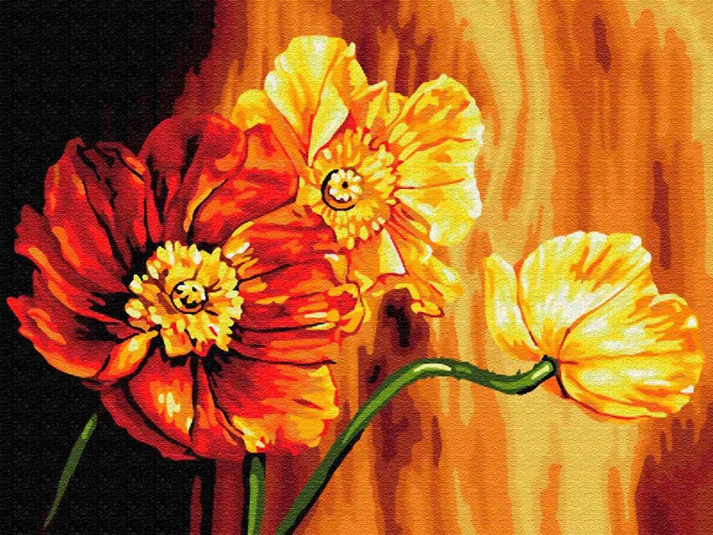 Купить Картина по номерам «Знойные цветы», Цветной (Standart), Россия, EX5696_Z