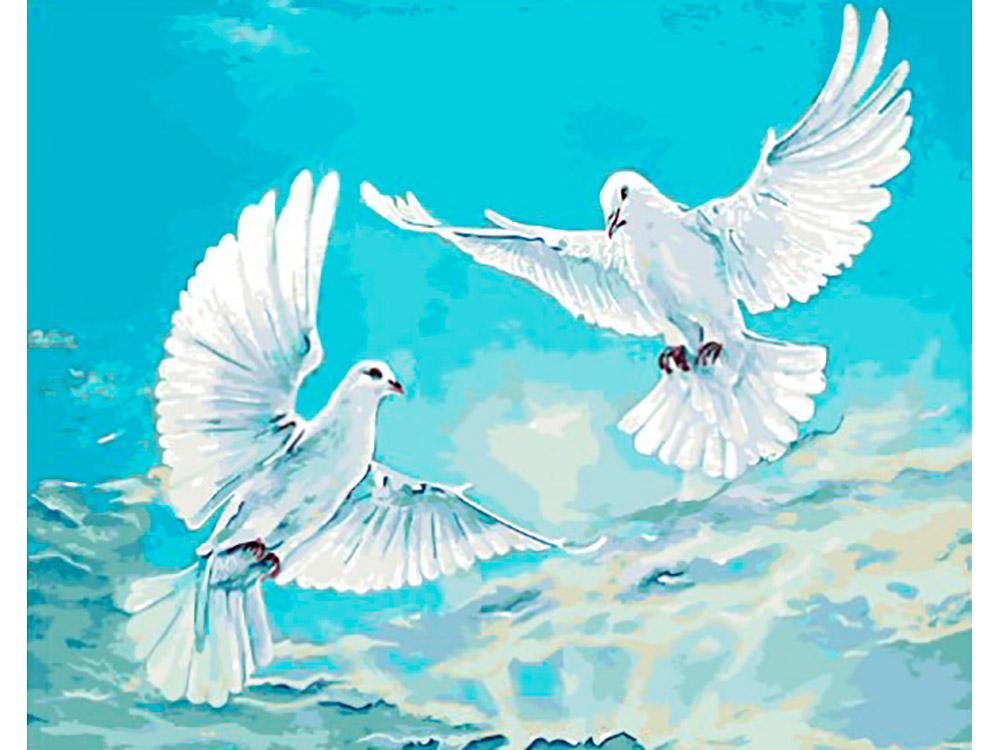 Купить Картина по номерам «Голуби в небесной синеве», Paintboy (Premium), Китай, EX5947