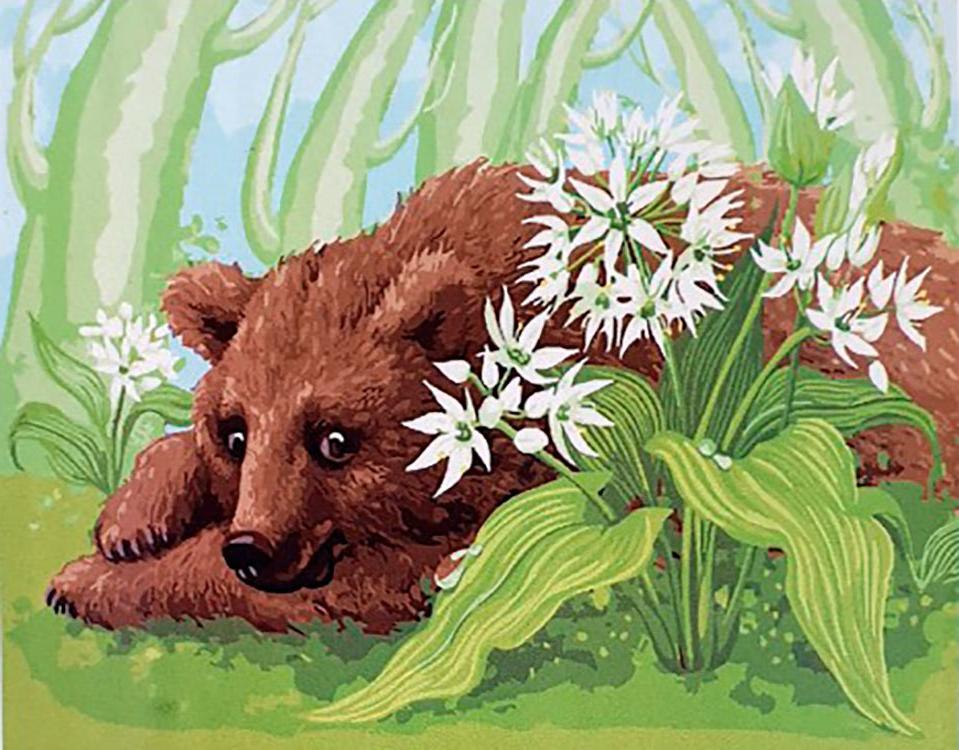 Купить Картина по номерам «Медвежонок», Paintboy (Premium), Китай, EX6029