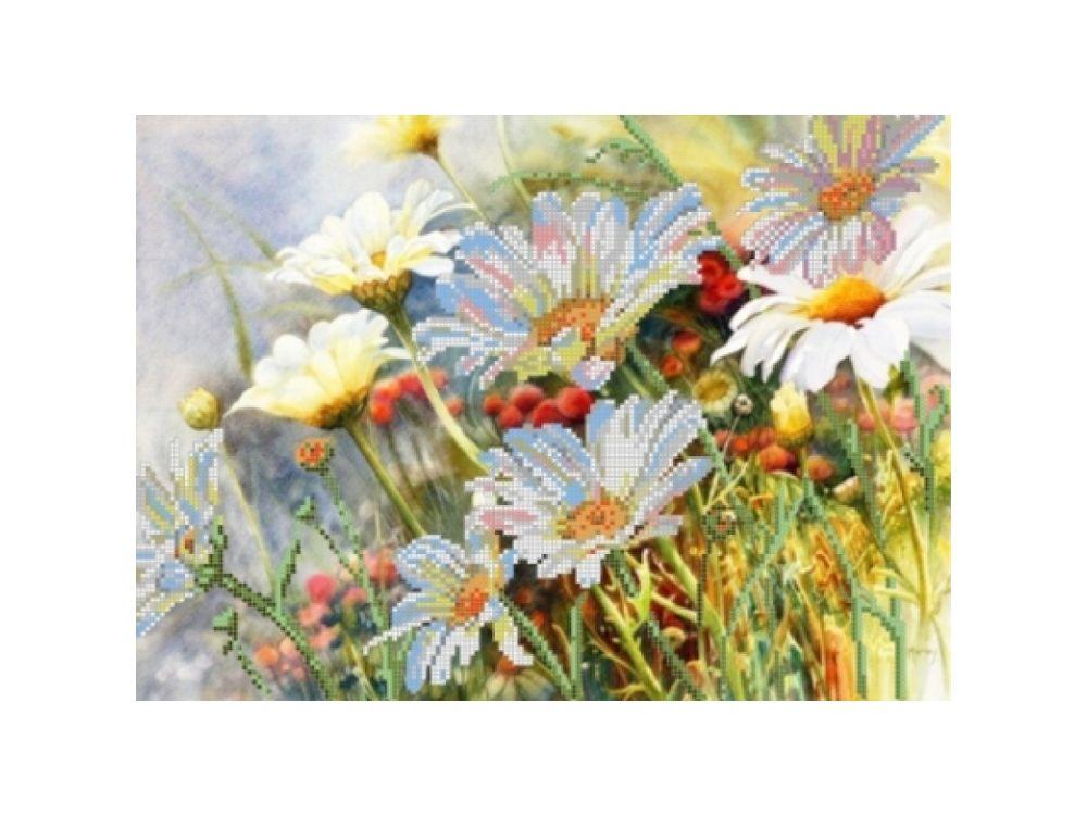 Купить Рисунок на ткани для вышивания бисером «Полевые цветы», Картины Бисером, S-035