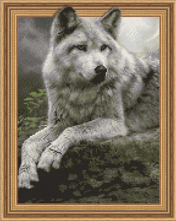 Купить Алмазная вышивка 5D «Ночной охотник», Painting Diamond, 40x50 см, TSGJ1124