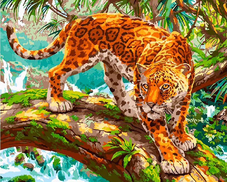 тигр и леопард в лесу картинки ношу этот зеленый