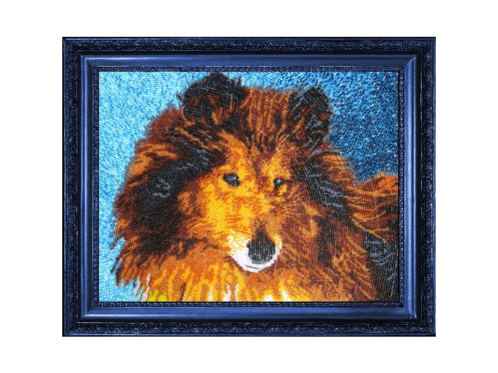 Купить Вышивка бисером, Набор для вышивания бисером «Колли», Butterfly, 25x32 см, 567