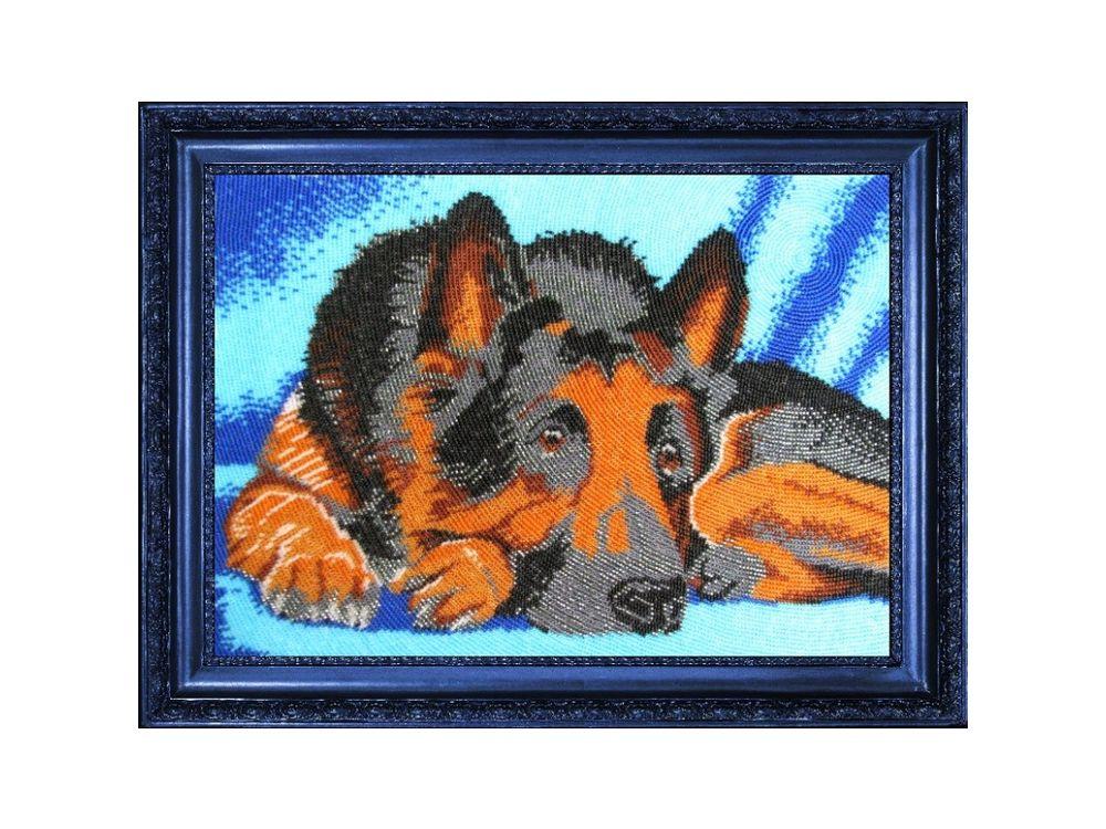 Купить Вышивка бисером, Набор для вышивания бисером «Овчарка», Butterfly, 24x34 см, 571