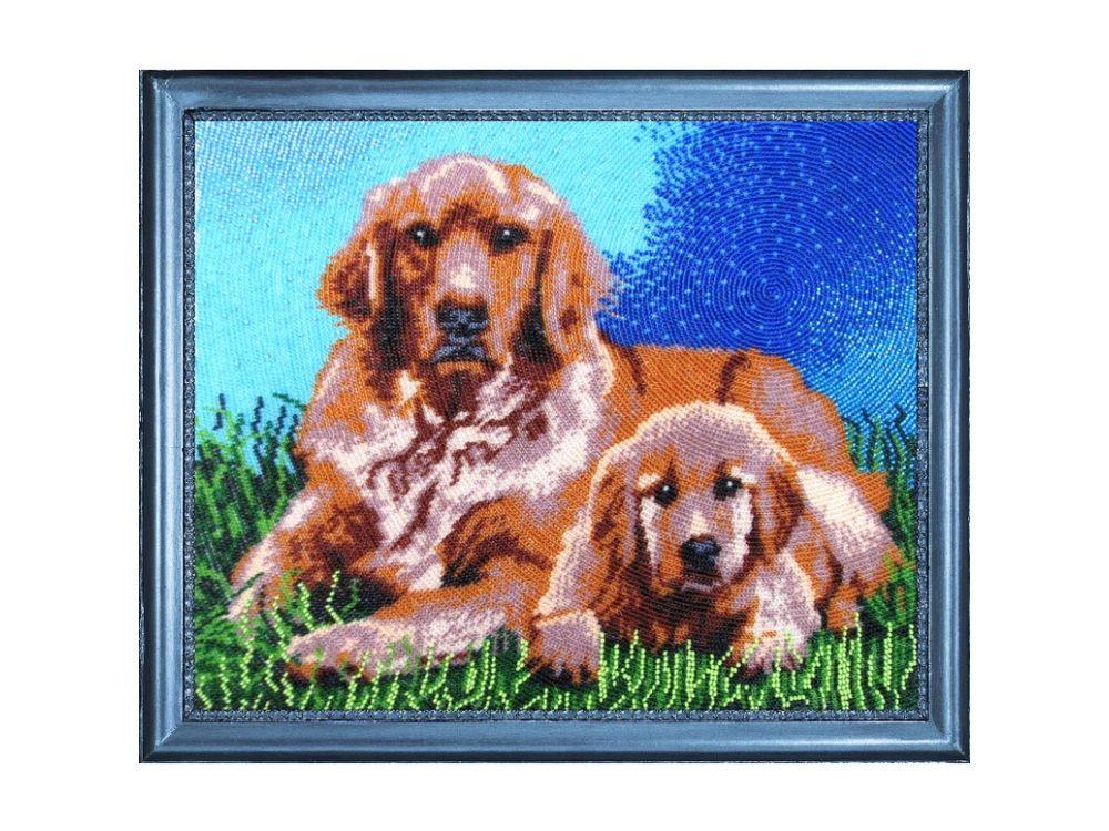 Купить Вышивка бисером, Набор для вышивания бисером «Ретриверы», Butterfly, 27x33 см, 581