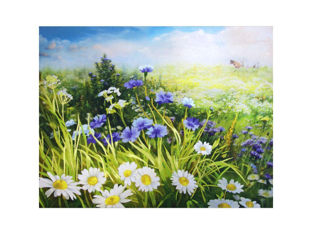 Купить Набор для вышивания «Цветы луговые», Рисуем иглой, N0059