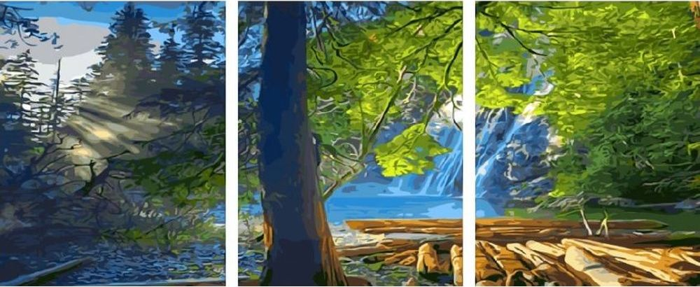 Купить Картина по номерам «Утро в лесу», Paintboy (Premium), 3 шт. 40x50 см, KX-0008