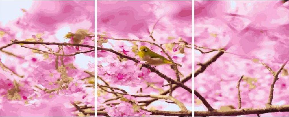 Купить Картина по номерам «Птичка на вишне», Paintboy (Premium), 3 шт. 40x50 см, KX-0011
