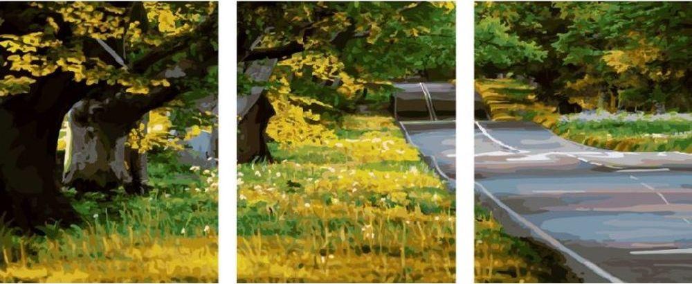 Купить Картина по номерам «Трасса», Paintboy (Premium), 3 шт. 40x50 см, KX-0035