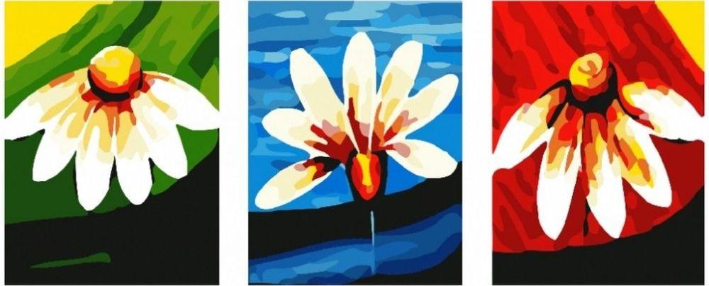 Купить Картина по номерам «Ромашки», Paintboy (Premium), 3 шт. 40x50 см, KX-0051