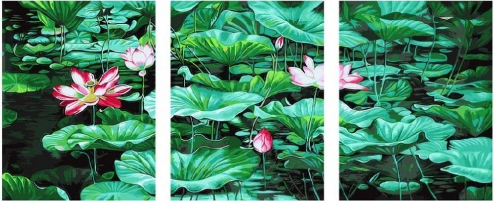 Купить Картина по номерам «Лотосы», Paintboy (Premium), 3 шт. 40x50 см, KX-0055