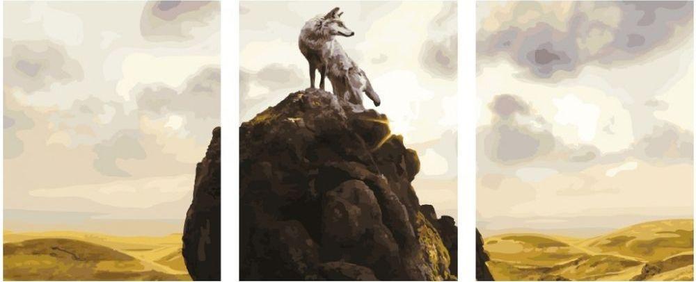 Купить Картина по номерам «Волк», Paintboy (Premium), 3 шт. 40x50 см, KX-0065