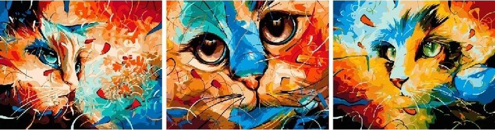 Купить Картина по номерам «Разноцветные кошки», Paintboy (Premium), 3 шт. 50x50 см, KX-0068