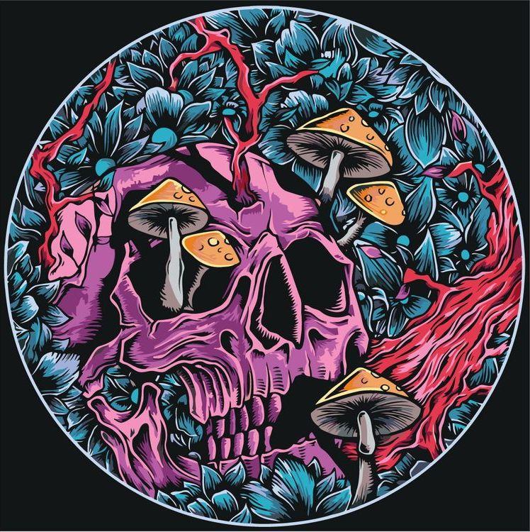 психоделическая картинка с черепом