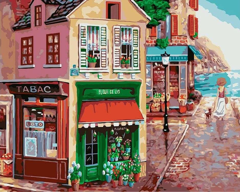 Купить Картина по номерам «Цветочная лавка», Фрея, PNB/R1 №100
