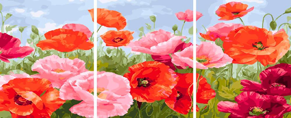 Купить Картина по номерам «Маки», Paintboy (Premium), Китай, 3 шт. 40x50 см, PX5263