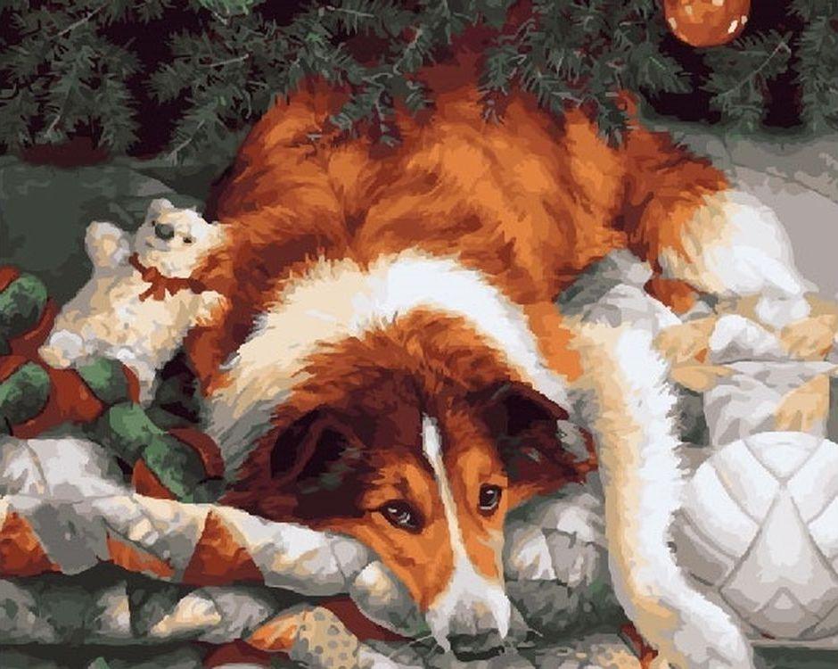 Купить Картина по номерам «Колли под ёлкой», Paintboy (Premium), RDG-2898
