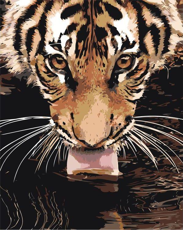 Картина по номерам «Лакающий тигр» Z-AB303 Живопись по ...