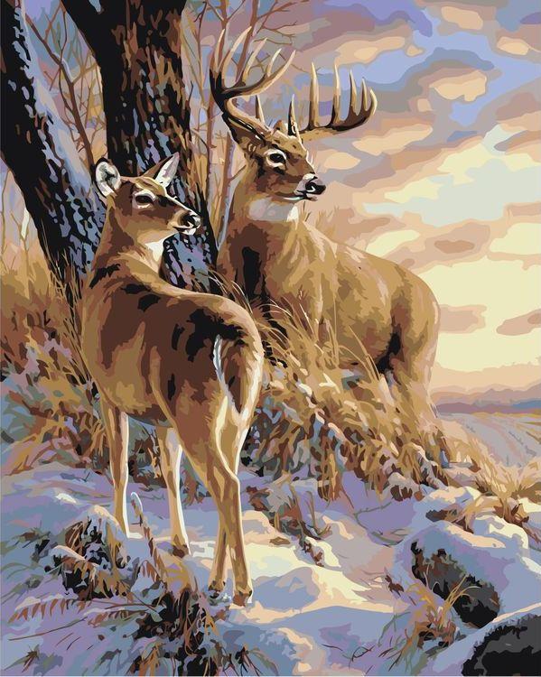 Купить Картина по номерам «Пара оленей», Живопись по Номерам, A604