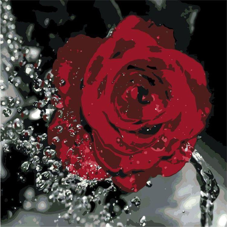 Купить Картина по номерам «Роза», Живопись по Номерам, KTMK-62273