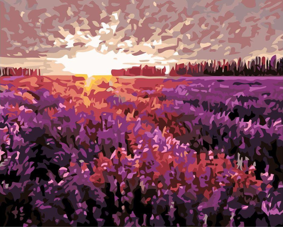 Купить Картина по номерам «Поле на закате», Живопись по Номерам, KTMK-733371