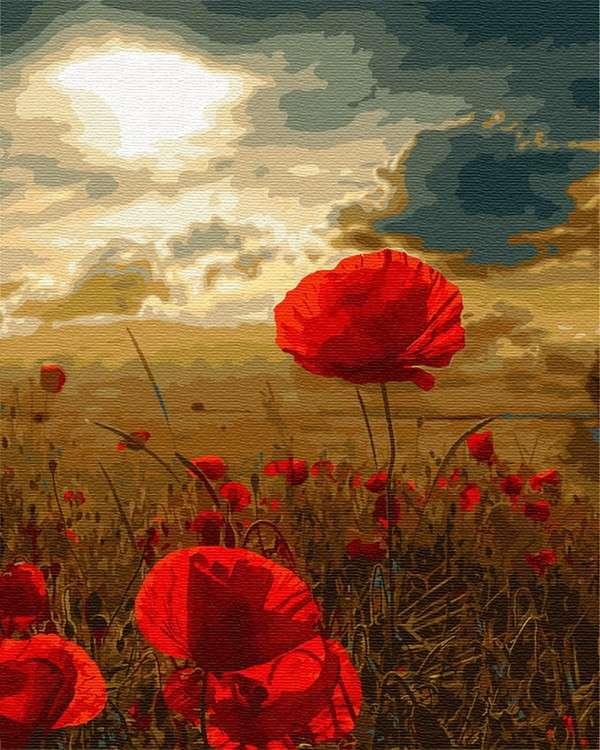 Картина по номерам «Маки на закате», ВанГогВоМне, ZX22869  - купить со скидкой