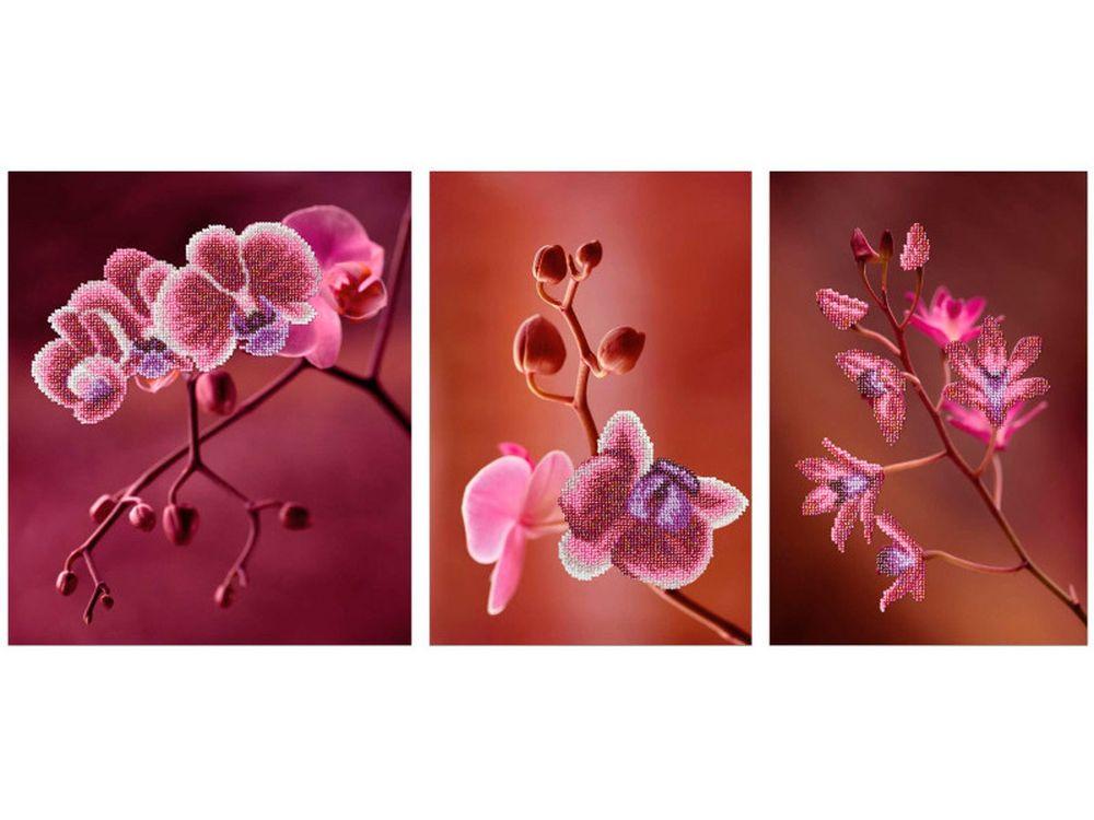 Купить Вышивка бисером, Набор вышивки бисером «Триптих Розовые орхидеи», Miniart Crafts, 1 шт. 25x30 см; 2 шт. 20x30 см, miniart.11006